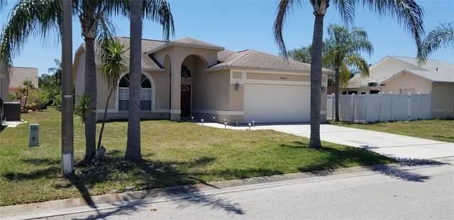 7828 Woburn Street, New Port Richey, FL 34653 (MLS #U8122741) :: SunCoast Home Experts