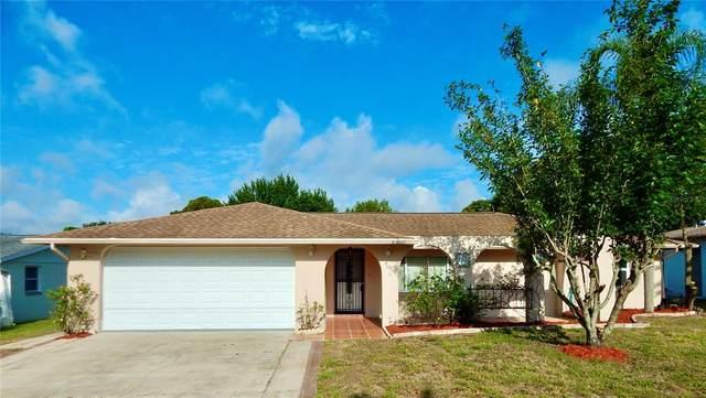 3547 Cockatoo Drive, New Port Richey, FL 34652 (MLS #U8122743) :: Armel Real Estate