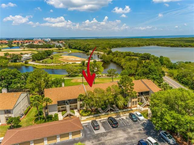 1901 Oyster Catcher Lane #813, Clearwater, FL 33762 (MLS #U8122819) :: Team Borham at Keller Williams Realty