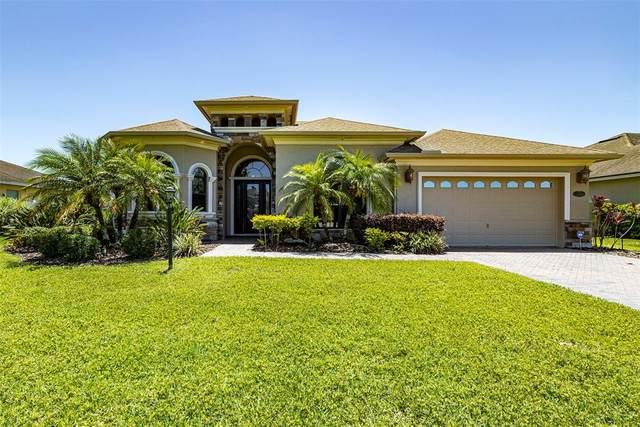 3303 Aaron Elias Court, Plant City, FL 33566 (MLS #U8122879) :: Team Buky