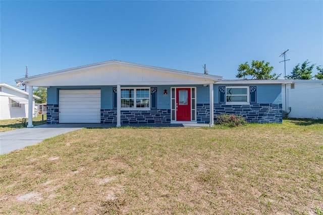 4916 Lemonwood Loop, Holiday, FL 34690 (MLS #U8122903) :: Rabell Realty Group