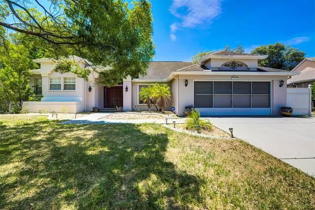 8088 Spanish Oak Drive, Spring Hill, FL 34606 (MLS #U8122946) :: Rabell Realty Group