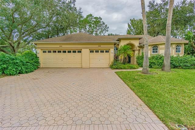 3661 Siena Lane, Palm Harbor, FL 34685 (MLS #U8122962) :: Visionary Properties Inc