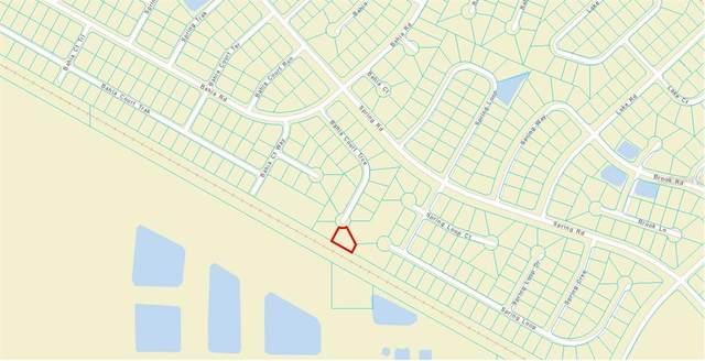 Bahia Court Trace, Ocala, FL 34472 (MLS #U8122985) :: Southern Associates Realty LLC