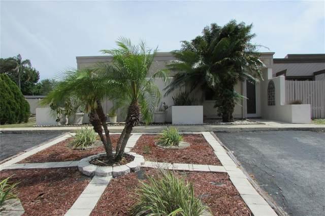 4324 Cedar Grove Street, Holiday, FL 34691 (MLS #U8123003) :: Rabell Realty Group