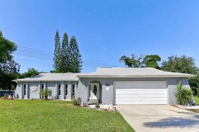 200 Leafwood Road, Tarpon Springs, FL 34689 (MLS #U8123028) :: Team Borham at Keller Williams Realty