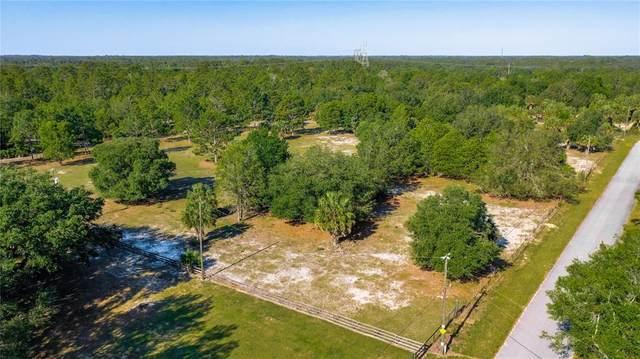 6670 N Paraqua Circle, Crystal River, FL 34428 (MLS #U8123066) :: Armel Real Estate