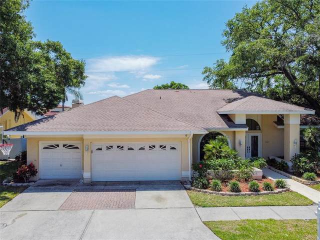 3021 Crest Drive, Clearwater, FL 33759 (MLS #U8123081) :: The Robertson Real Estate Group