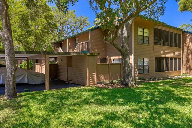 305 Lennox Road W #305, Palm Harbor, FL 34683 (MLS #U8123083) :: Delgado Home Team at Keller Williams