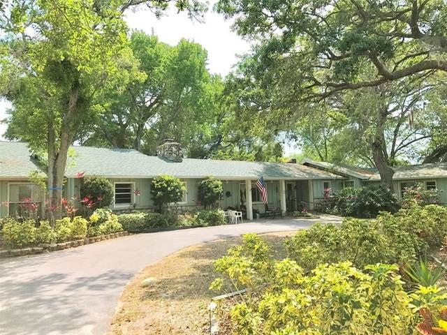 Palm Harbor, FL 34684 :: Pepine Realty