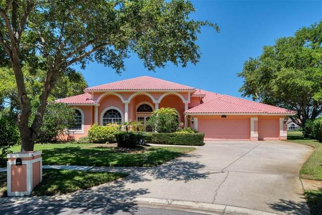 7398 Kindal Point N, Pinellas Park, FL 33782 (MLS #U8123130) :: Team Borham at Keller Williams Realty