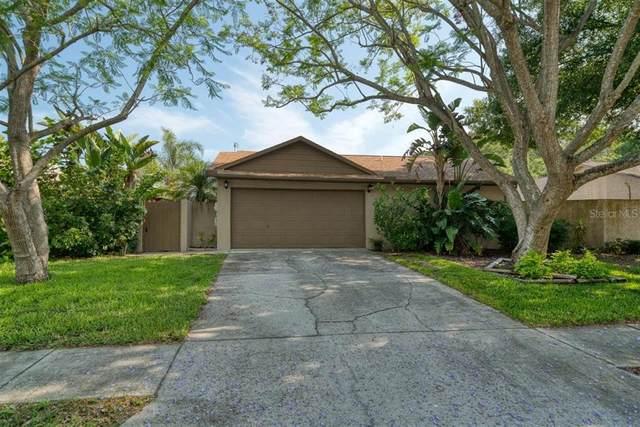 2759 Monica Lane, Palm Harbor, FL 34684 (MLS #U8123153) :: Keller Williams Realty Select