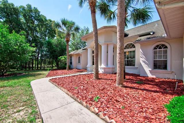 3106 W Daffodil Drive, Beverly Hills, FL 34465 (MLS #U8123164) :: Your Florida House Team