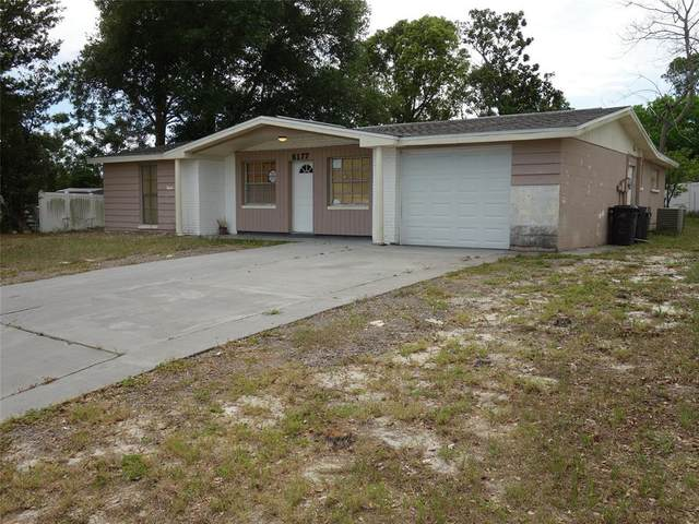 6177 Maplewood Drive, New Port Richey, FL 34653 (MLS #U8123181) :: MVP Realty