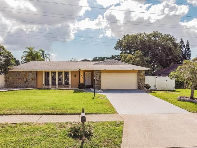 570 Hollow Ridge Road, Palm Harbor, FL 34683 (MLS #U8123223) :: Griffin Group