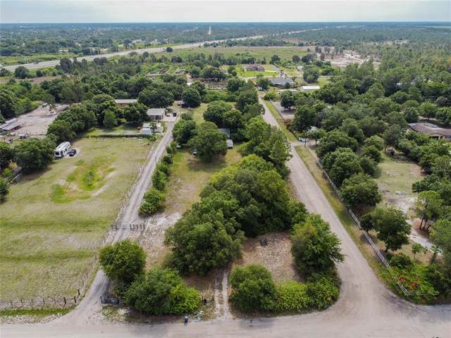 11631 Shawnee Road, Fort Myers, FL 33913 (MLS #U8123276) :: Carmena and Associates Realty Group