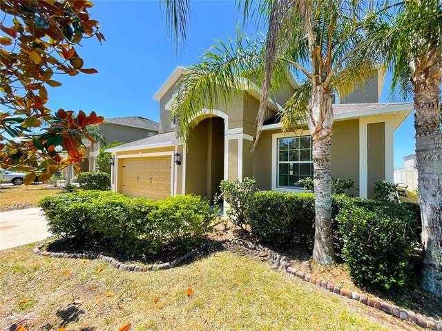 13824 Newport Shores Drive, Hudson, FL 34669 (MLS #U8123350) :: Positive Edge Real Estate