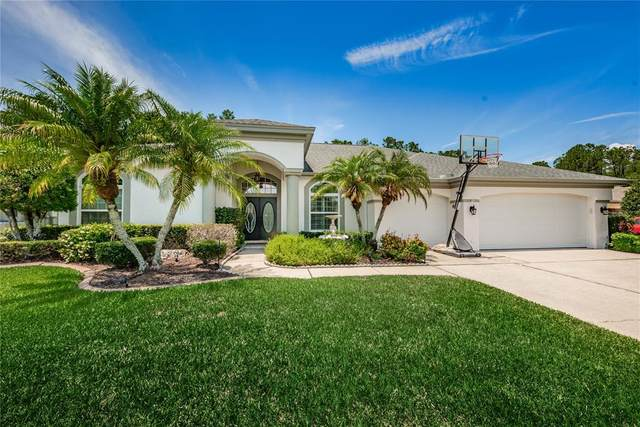 7721 Northaven Place, New Port Richey, FL 34655 (MLS #U8123367) :: EXIT King Realty