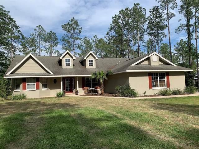 17818 Palamino Lake Drive, Dade City, FL 33523 (MLS #U8123372) :: Southern Associates Realty LLC
