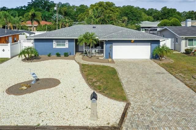 1490 San Roy Drive, Dunedin, FL 34698 (MLS #U8123397) :: Positive Edge Real Estate