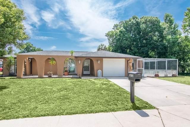 2812 Finch Drive, Holiday, FL 34690 (MLS #U8123419) :: Armel Real Estate