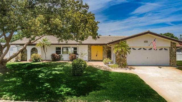 13983 Pinecrest Drive, Largo, FL 33774 (MLS #U8123430) :: RE/MAX LEGACY
