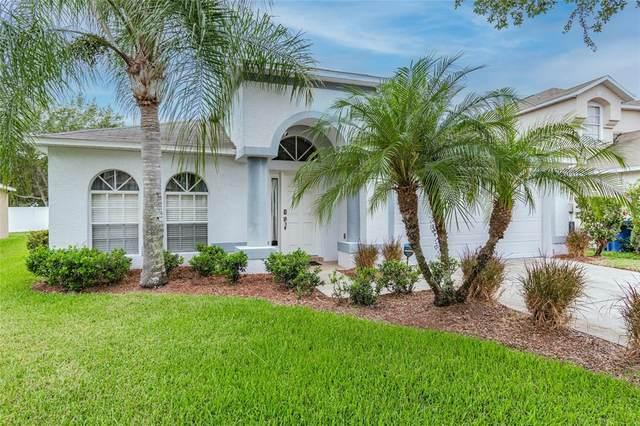 8524 Carriage Pointe Drive, Gibsonton, FL 33534 (MLS #U8123461) :: Keller Williams Realty Select