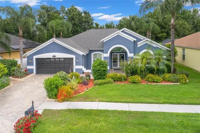 8845 Wavyedge Court, Trinity, FL 34655 (MLS #U8123464) :: Team Borham at Keller Williams Realty