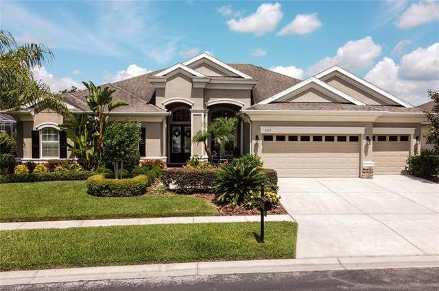 3217 Watermark Drive, Wesley Chapel, FL 33544 (MLS #U8123468) :: The Duncan Duo Team