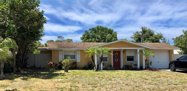 1015 Goshen Road, Tarpon Springs, FL 34689 (MLS #U8123568) :: RE/MAX LEGACY