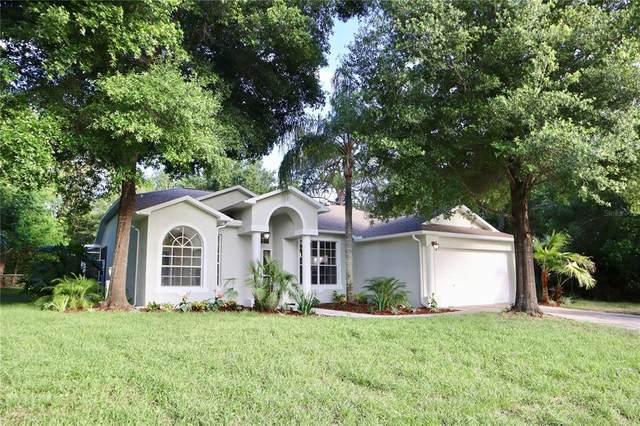 13350 Angler Street, Spring Hill, FL 34609 (MLS #U8123588) :: Delgado Home Team at Keller Williams
