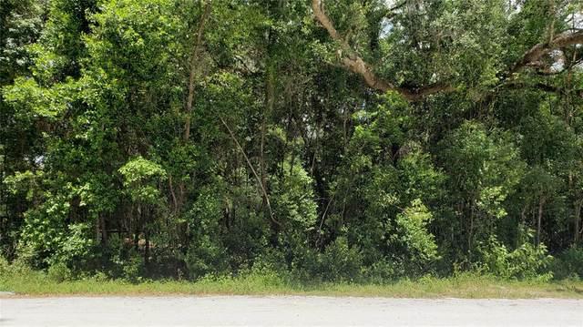 00 Monroe, Brooksville, FL 34604 (MLS #U8123633) :: Carmena and Associates Realty Group