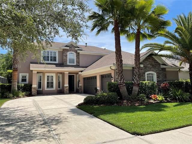 8337 Old Town Drive, Tampa, FL 33647 (MLS #U8123657) :: Team Borham at Keller Williams Realty