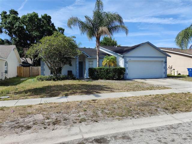 3102 Sean Way, Palm Harbor, FL 34684 (MLS #U8123665) :: Delgado Home Team at Keller Williams