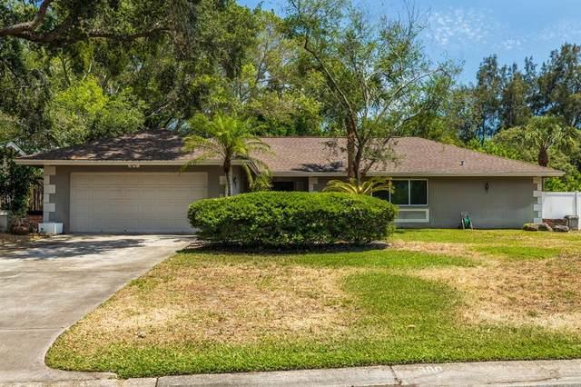 900 31ST Avenue NE, St Petersburg, FL 33704 (MLS #U8123740) :: Everlane Realty