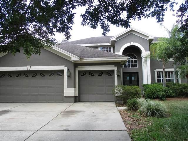 5318 Twin Creeks Drive, Valrico, FL 33596 (MLS #U8123931) :: Globalwide Realty