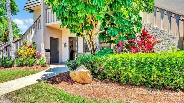 501 Cordova Green #501, Largo, FL 33777 (MLS #U8124019) :: Rabell Realty Group