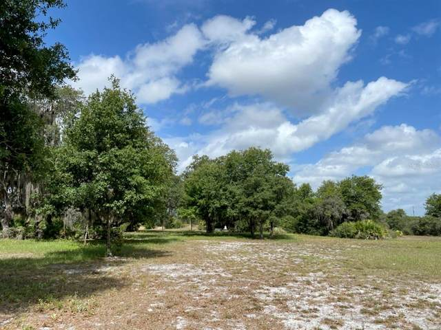 40206 11TH Avenue E, Myakka City, FL 34251 (MLS #U8124156) :: Medway Realty