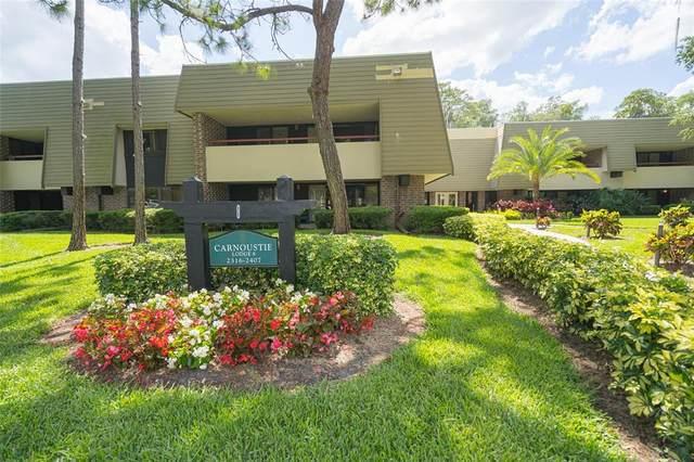 36750 Us Highway 19 N 3-209, Palm Harbor, FL 34684 (MLS #U8124172) :: Rabell Realty Group