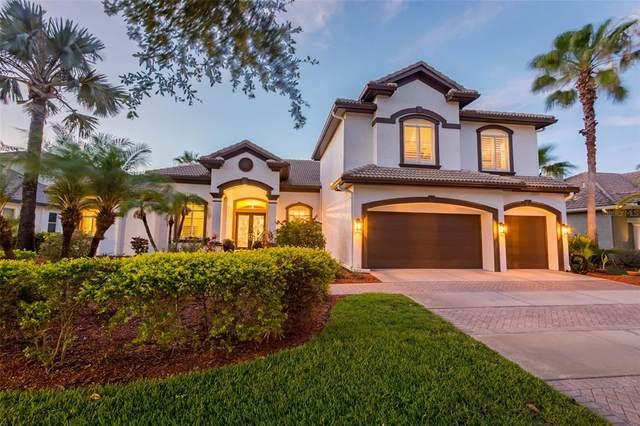 9916 Tree Tops Lake Road, Tampa, FL 33626 (MLS #U8124183) :: Vacasa Real Estate