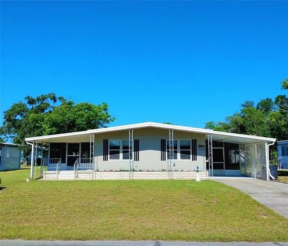 7325 Mina Avenue, Brooksville, FL 34613 (MLS #U8124300) :: Zarghami Group