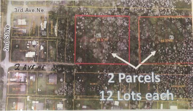 013790-0000, LUTZ, FL HILLSBOROUGH COUNTY, Lutz, FL 33549 (MLS #U8124317) :: Everlane Realty