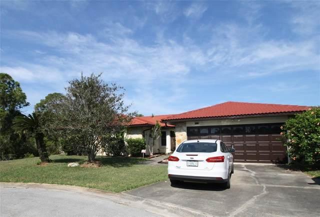 9725 San Vincente Way, Port Richey, FL 34668 (MLS #U8124504) :: Armel Real Estate