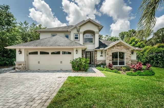 2548 Richards Road, Tarpon Springs, FL 34688 (MLS #U8124537) :: Medway Realty