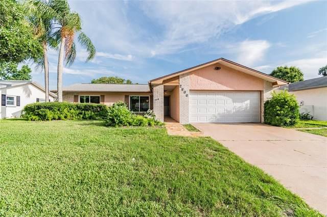 2906 Macalpin Drive S, Palm Harbor, FL 34684 (MLS #U8124553) :: Aybar Homes