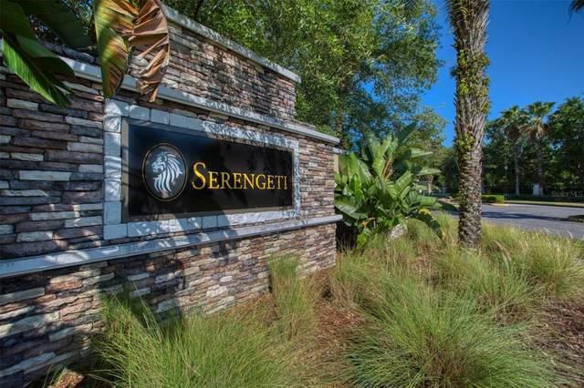 15355 Serengeti Boulevard, Spring Hill, FL 34610 (MLS #U8124556) :: Armel Real Estate