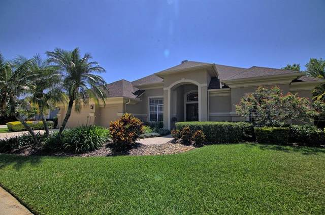 10535 Greensprings Drive, Tampa, FL 33626 (MLS #U8124634) :: Delgado Home Team at Keller Williams