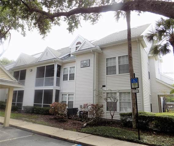 3269 Haviland Court #303, Palm Harbor, FL 34684 (MLS #U8124644) :: Delgado Home Team at Keller Williams