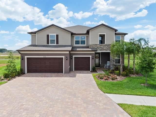 10701 Foxtail Pasture Way, Tampa, FL 33647 (MLS #U8124648) :: Delgado Home Team at Keller Williams