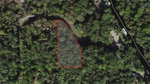 10587 N Dawnflower Point, Crystal River, FL 34428 (MLS #U8124711) :: Everlane Realty